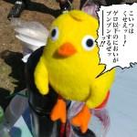 2016-05-22_20-24-55